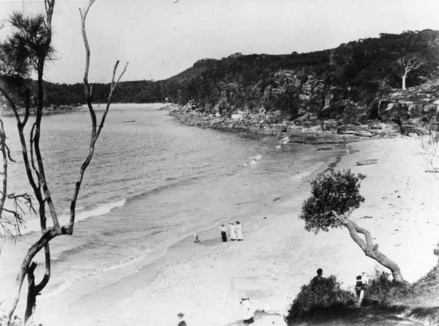 Shelly Beach and Manly Fairy Bower