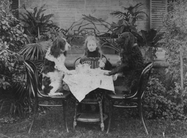 Kitty Barton having tea with her dogs